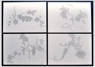 La sombra leve- 4 dibujos. 2013 Esmalte/papel Ingres. 16 x 23 cm. c/u.